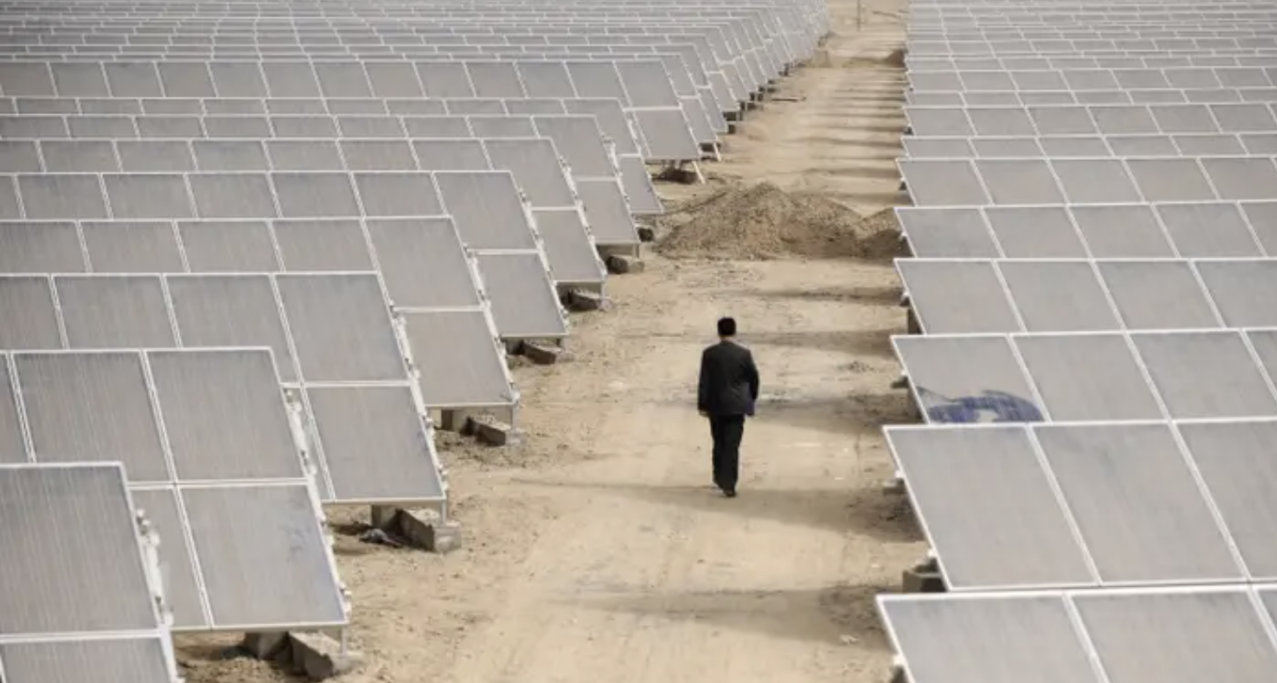 Man walking down a dirt road surrounded by solar panels.